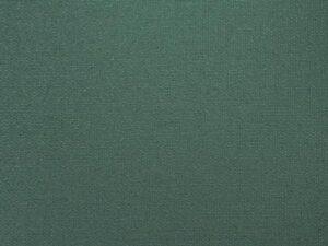 roleta-ciemna-zielen