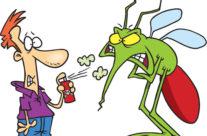Moskitiery- choroby roznoszone przez owady